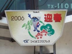 2006迎春